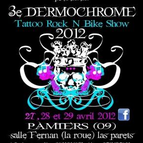 27/28 et 29 Avril - DERMOCHROME FESTIVAL 2012