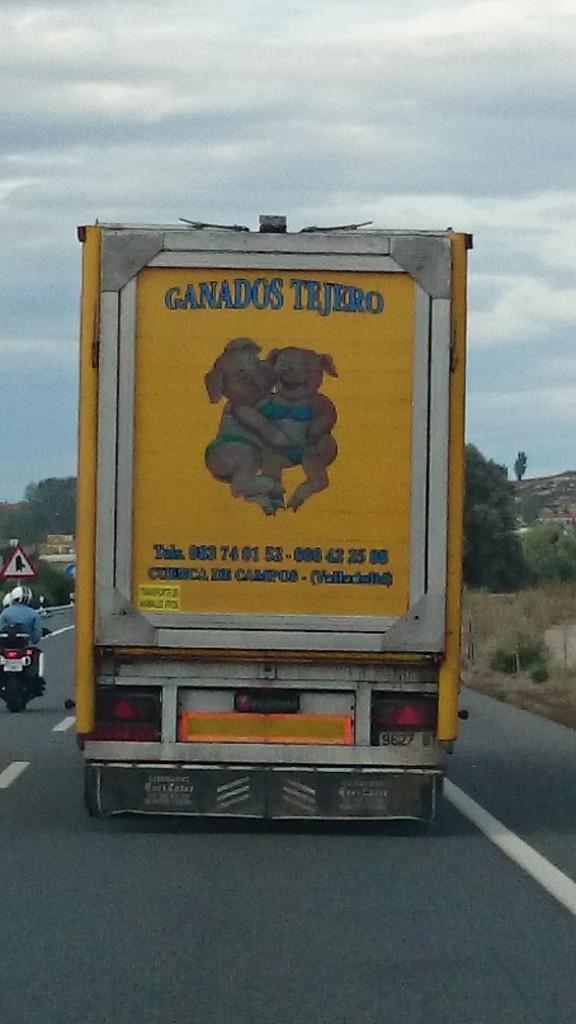 """""""Humour"""" Noir et décalé espagnol ... BEURK ! Pauvres cochons!"""