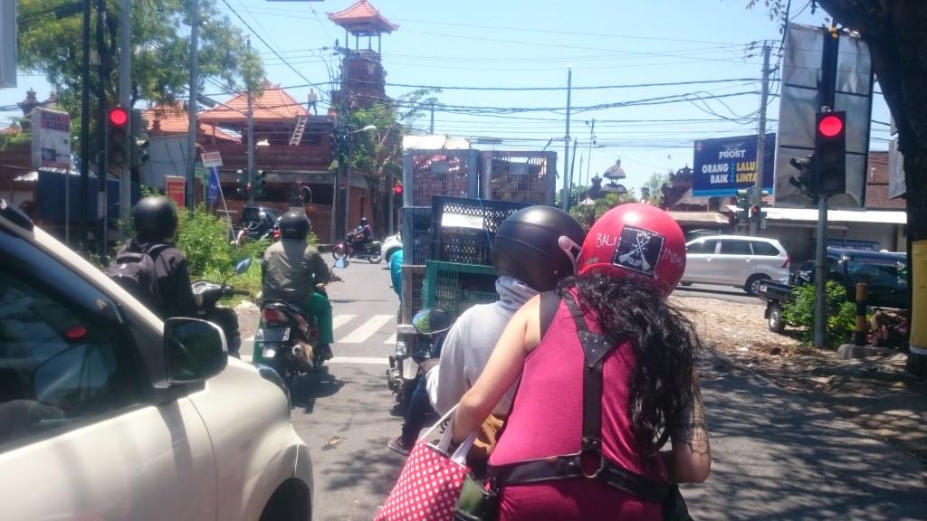Bali & XORGIN